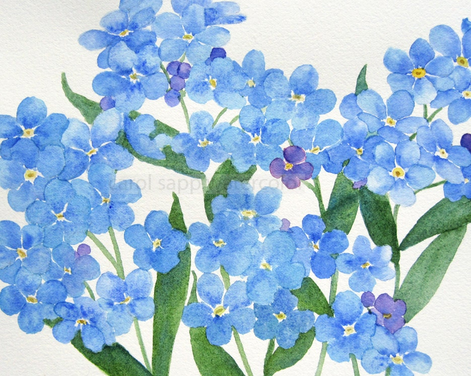 Forget Me Nots Watercolor Giclee Print