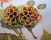 Pretty Blossoms in Brown