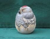 Hatching Baby Hawk Wood Carving Hand Carved Handmade     OOAK