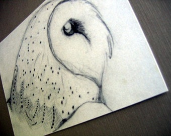 Barn Owl Sketch 5x7 Art Print