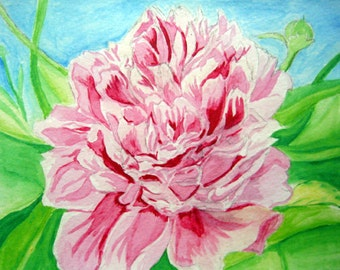 Peony Flower Watercolor 8x10 Art Print