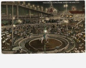 Circus Luna Park Coney Island NY At Night Vintage Postcard - Horse Trainer Ladies Men Audience