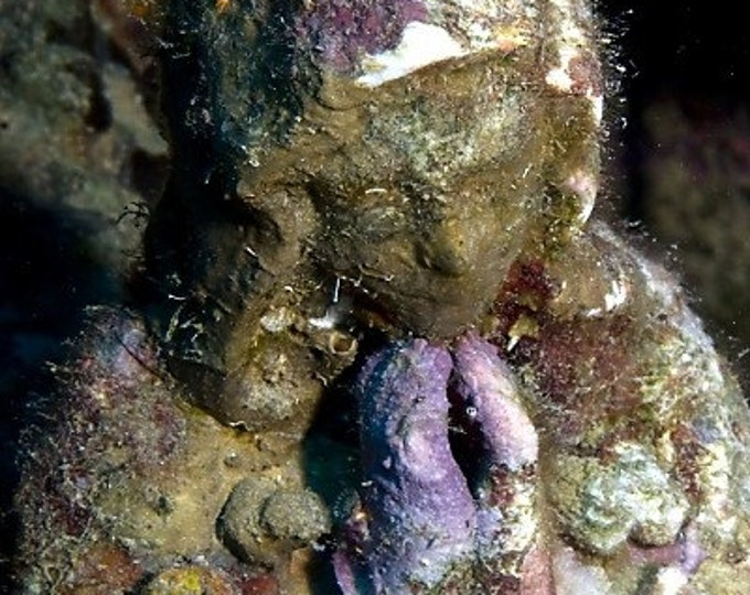 Madonna of the Deep Underwater Photography Religious Icon Nautical Good Luck Charm