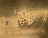 Pecos Mystic -- 7x20 Photograph