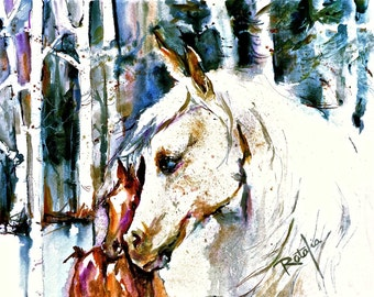 White Arabian with Foal  in wood Arab horse 16x20 Water color Print Signed by artist Carol Ratafia DOUBLE MATTED to 16x20