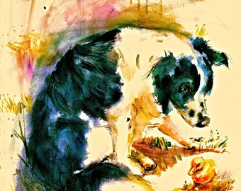 BORDER COLLIE This Watercolor dog print with duck is signed by the artist Carol Ratafia Double Matted  to 16x20