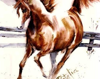 Chestnut  Arabian-Arab- Watercolor horse Print SIGNEDby the Artist Carol Ratafia DOUBLE MATTED to 16x20