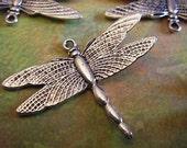 10 - Antique Silver - Dragonfly (ASDC)