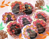 Fall Thanksgiving Turkey 1 inch Plastic Back Medallion Cabochon Cameo Charms 25mm Lot