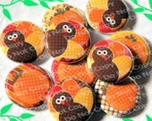 Cute Turkeys and Pumpkins 1 inch Plastic Back Medallion Cabochon Cameo Charms 25mm Lot
