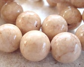 Fossil Beads 12mm Natural Desert Sand Brown Smooth Round Stones - 12 Pieces