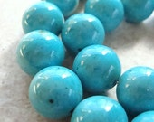 Fossil Beads 10mm Natural Aqua Blue Smooth Round Stones - 12 Pieces