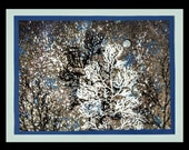 Handpainted Winter Fabric Panel -- Blue and White Trees and Moon Painted on Black Fabric Bordered in Blue and Grey