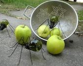 Crisp Green  Apple Spider Trio of Repurposed Art