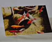 Koi Pond All Occasion Greeting Card - Fine Art Photo Greeting Card - Koi Fish Pond Art