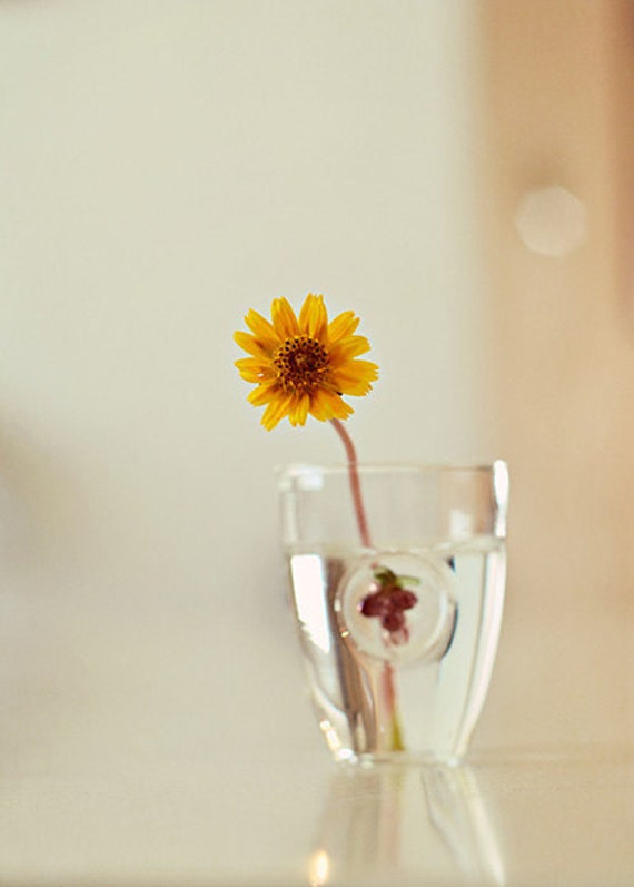 Simplicity Yellow Flower Photograph Nature Photography From Israel Floral Decor Affordable Home