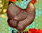 Poppy's Farm Fresh Eggs