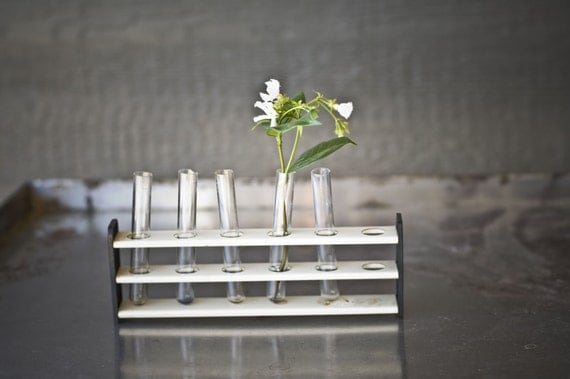 Vintage Test Tubes and Stand