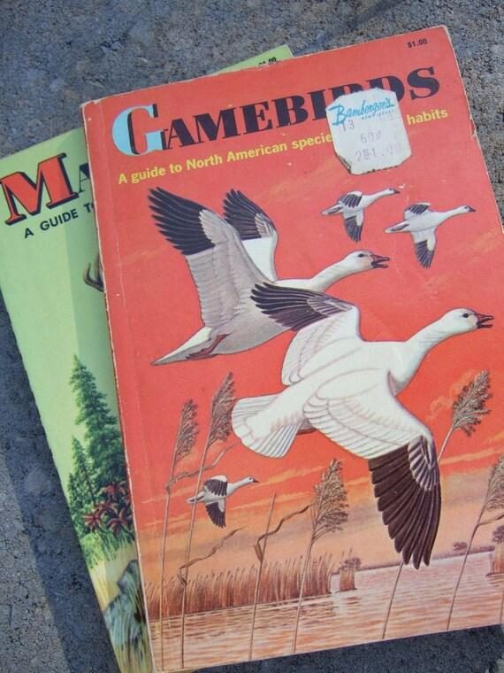 Vintage Golden Nature Guides - Mammals Gamebirds