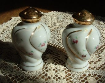 Hand Painted porcelain Salt and Pepper Shakers