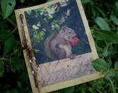 Handmade Paper Greeting Card - Squirrel with Strawberry