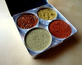 BLACK FRIDAY Etsy - Great for guys and dudes -Dry Spice Rubs for grilling - Packed in a beautiful aluminium case