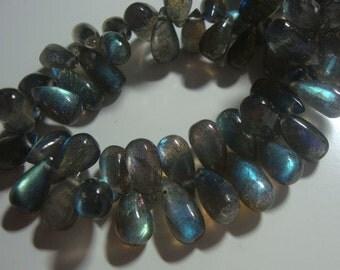 Full Strand, 10-12x6-7mm, Pretty Flashing Fiery Blue Green Gold LABRADORITE Smooth Teardrop Briolettes - fe1