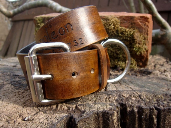 1 1/2 inch Custom Dog Collar with Name and Number on Chocolate Brown Leather