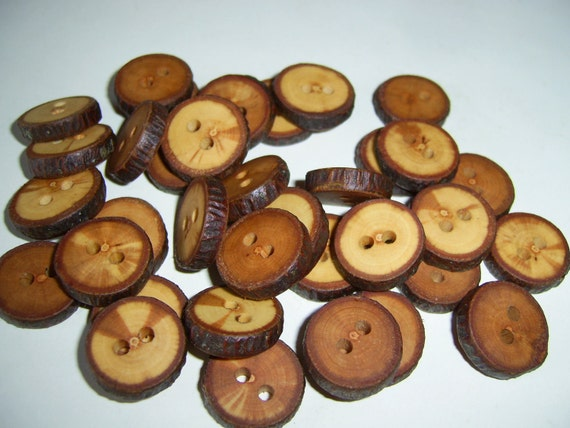 35 Handmade  apple wood Tree Branch Buttons with Bark, accessories
