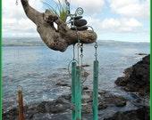 a Hawaiian Wind Chime and a Tillandsia air plant