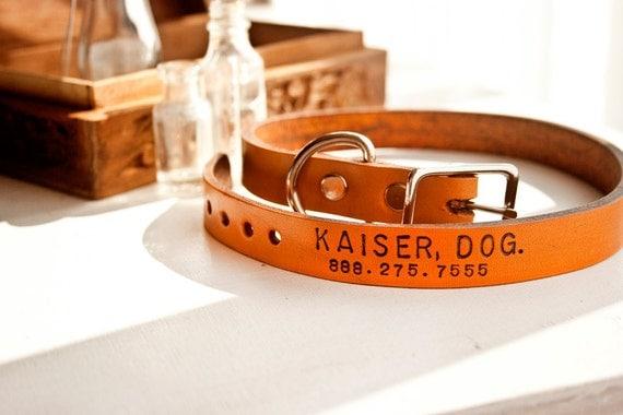 Tagless Leather Dog Collar