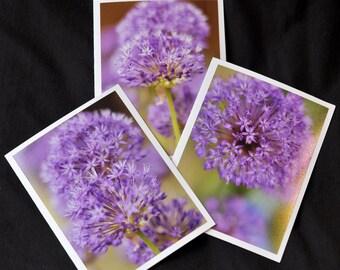 Garlic Flower Trio