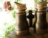 Antique Viewing Binoculars