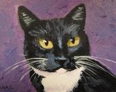 Luna with Purple - Cat Painting, Pet portrait, Cats,Tuxedo cat, Original, ACEO, Animals