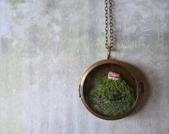 O'er the Cliffs of Moher. Irish Country Style Necklace. Moss Miniature Terrarium Brass Locket Pendant