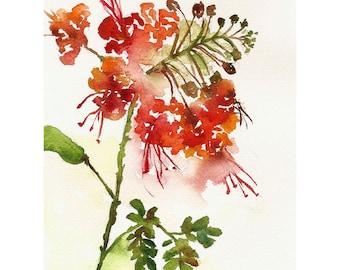 Orange Flower Watercolor, Print 8x10, Watercolor Flowers
