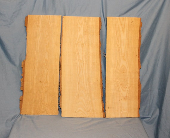 3 Rustic Live Edged Ash Slabs, Item 123