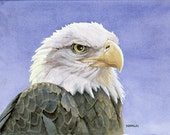 Icon (Bald Eagle) - Open edition print of an original watercolor (fits 11x14 frame)