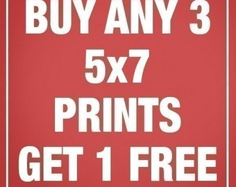 PROMOTION from KeepCalmShop -Buy any 3-5x7 Prints and GET 1-5x7 Print FREE