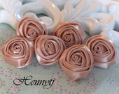 Set of 6 - 30mm Adorable PETITE Rolled Satin Rose Satin Rosettes Fabric flowers - Dusty Peach