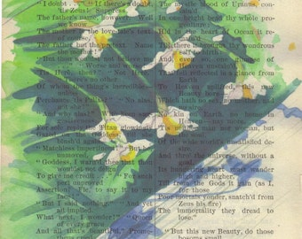 Daffodills Print on Antique Book Page Signed Print & Free Shipping in US