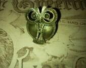 Harry the hoot owl