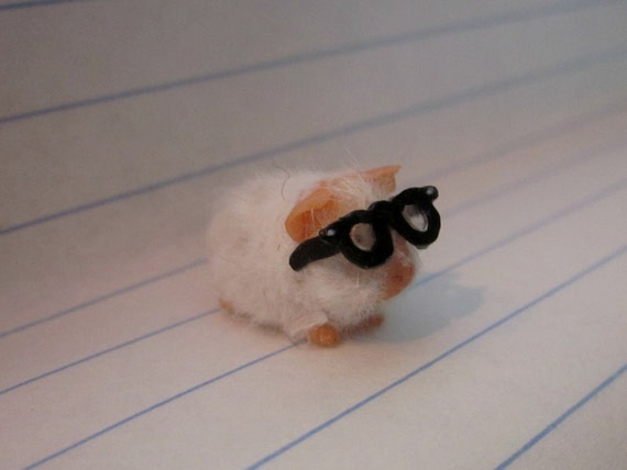 Miniature Guinea Pig with Glasses