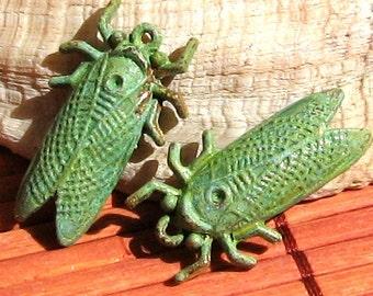 CICADA insect pendant charm , Green patina 2 pcs , handmade patina jewelry supplies