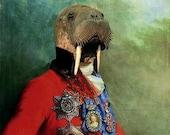 Sir Odobenus Rosmarus Portrait - 8 X 10 Fine Art Print