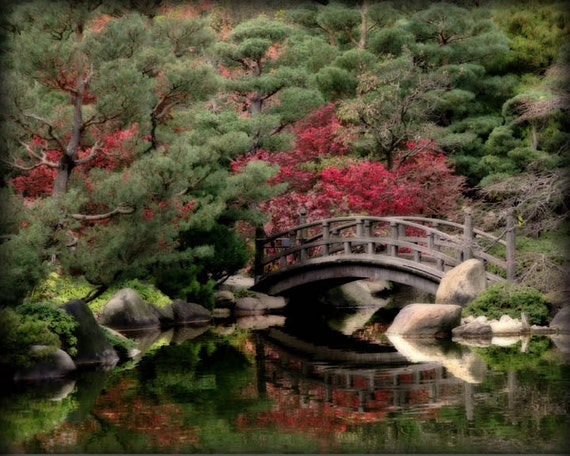 Japanese wooden bridge koi pond reflection art photography for Koi pond japan