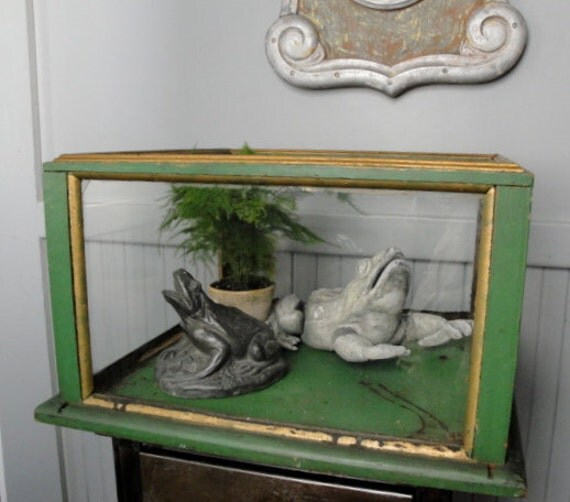 Vintage wood and glass display case terrarium