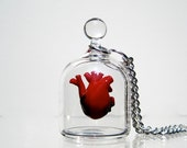 Anatomical Heart Necklace - Heart in a Jar
