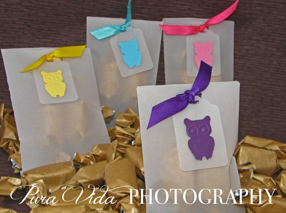 OWL BABY SHOWER Favors - Blue, Pink, Purple, Yellow, Green - You Choose Color(s) - Each with 2 salted caramels featured by the Food Network