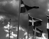 Flags sweden Photography swedish blowing black white pride stockholm clouds sun blue and yellow - Into the wind -fine art photograph